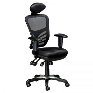 ErgoNet 3 - with Headrest