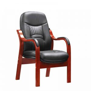 Prince Visitors Chair - Leather