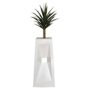 1m Yucca in Diagonal Pot