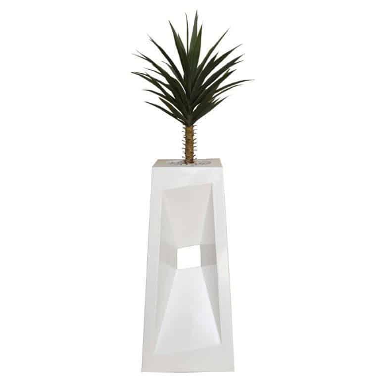 1m Yucca in Diagonal Pot 1