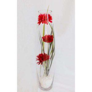 Gerbera in Glass Vase