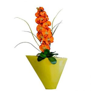 Orchid in Diagonal Vase