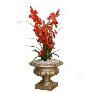 Red Cymbidium in Grecian Vase
