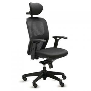 Active Executive w/Head Rest