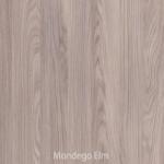 Mondego Elm